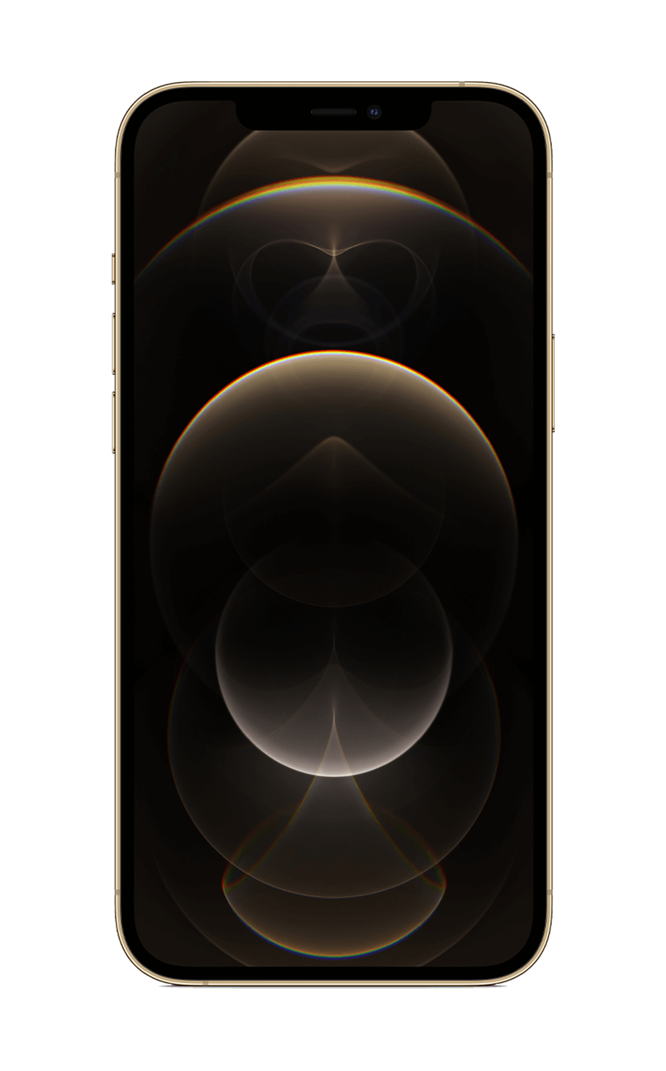 Rear View iPhone 12 Pro Max Gold
