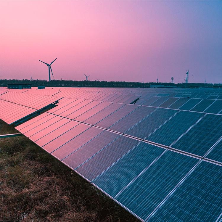 Aerogeneradores y paneles solares en un campo.